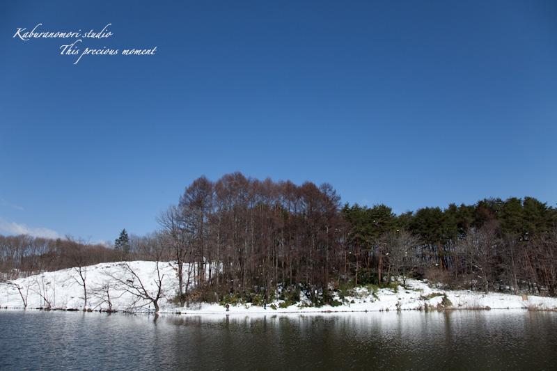 大雪の後散歩で出会った美しい風景_c0137403_1855058.jpg