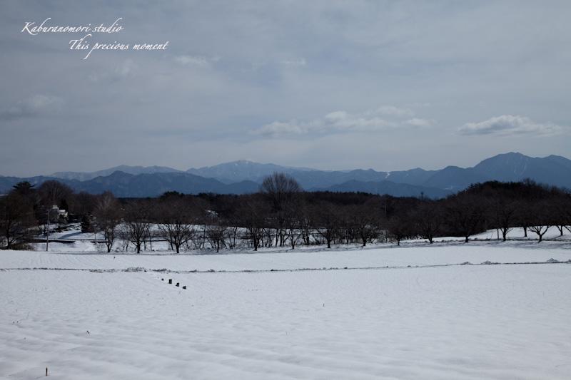大雪の後散歩で出会った美しい風景_c0137403_1875510.jpg