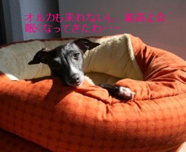 f0187704_1039273.jpg