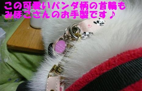 f0121712_8425730.jpg
