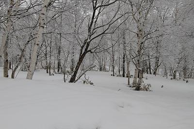 菅平で雪遊び♪_c0216518_22315340.jpg