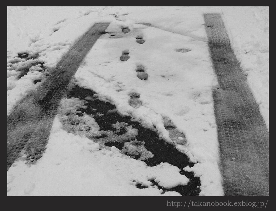 雪路(yukimichi)_f0193425_102625.jpg