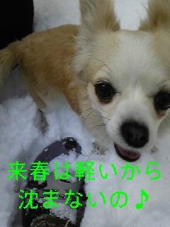 f0148927_11132977.jpg
