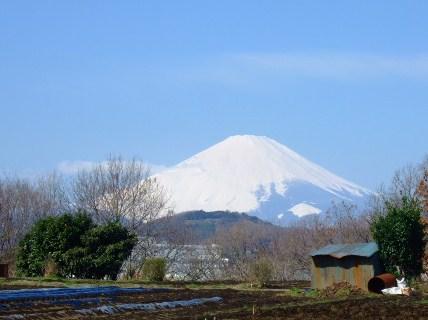 見事な富士山.....綺麗です!_b0137932_17541628.jpg