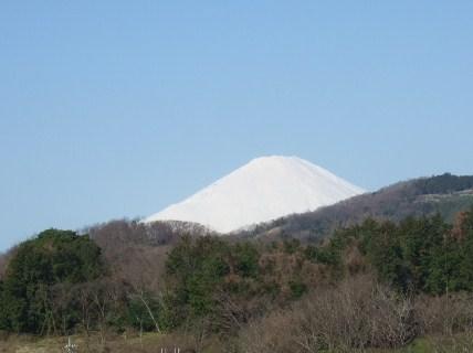 見事な富士山.....綺麗です!_b0137932_17593570.jpg