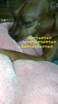 d0150161_22111973.jpg