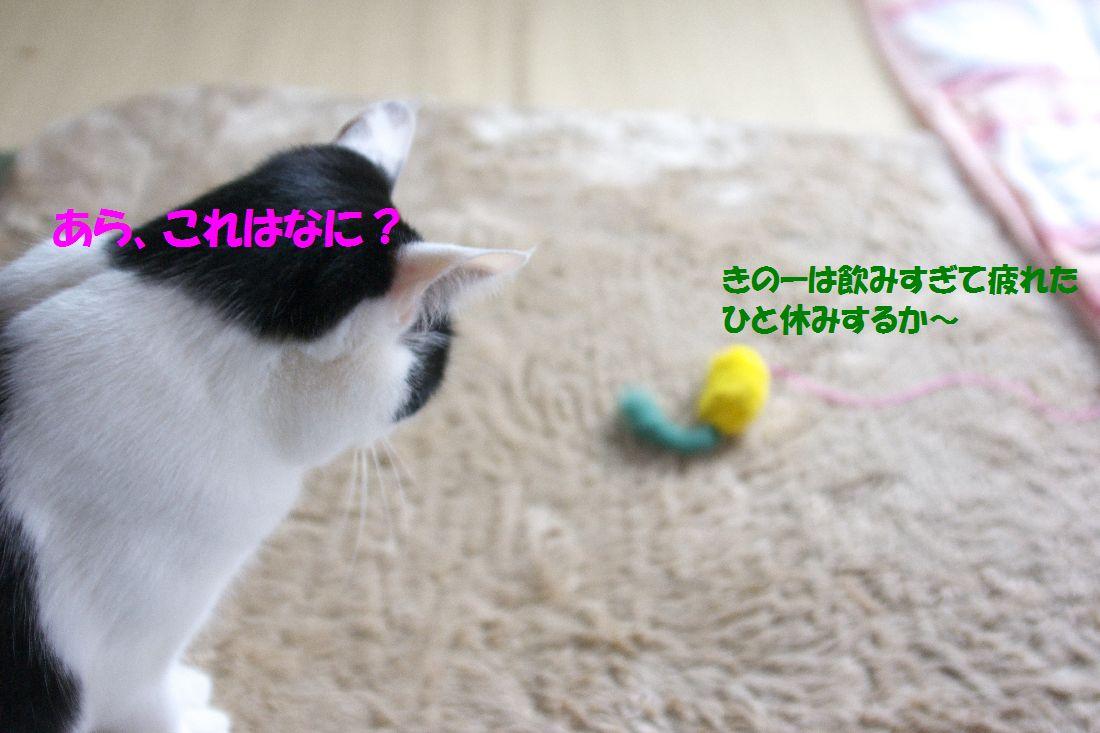 f0197682_14431795.jpg