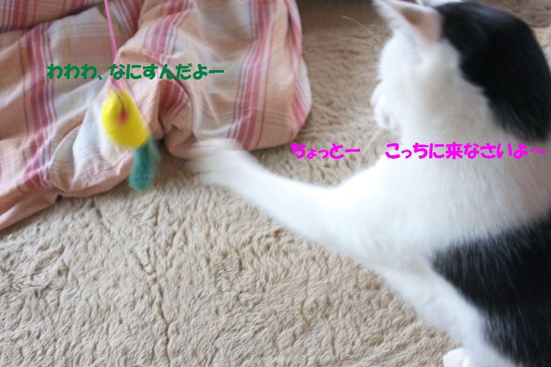 f0197682_14433288.jpg