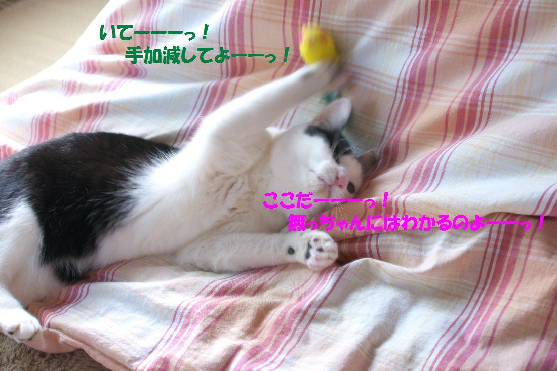 f0197682_14443044.jpg