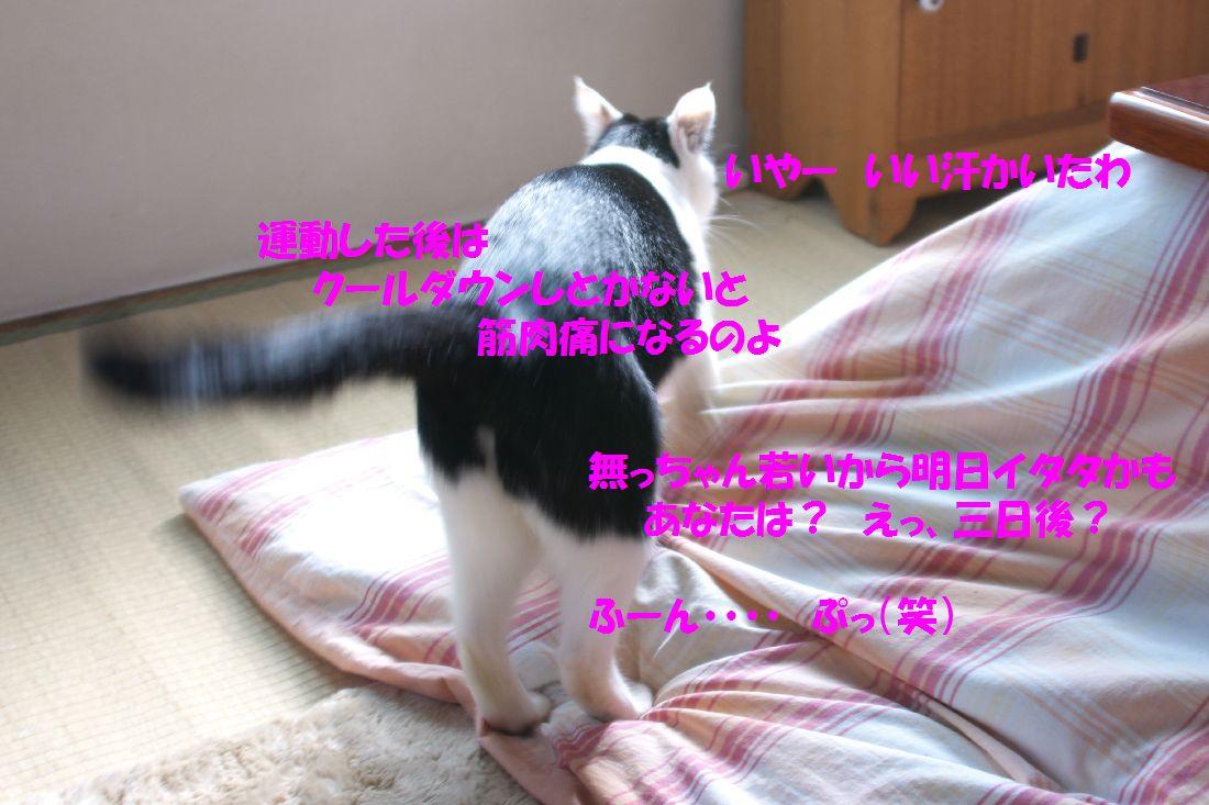 f0197682_1447549.jpg