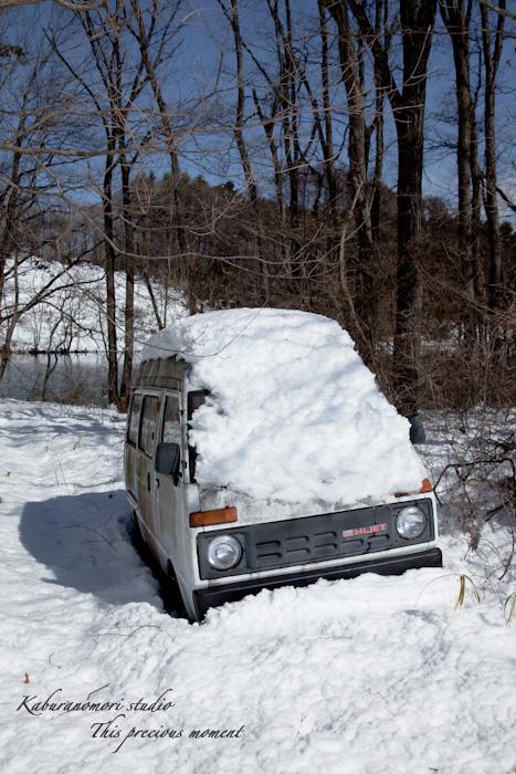 大雪の後散歩で出会った美しい風景_c0137403_14561892.jpg