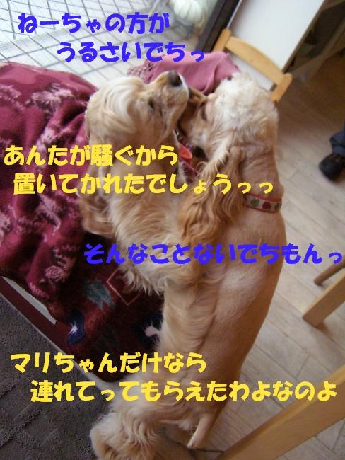 b0067012_2115792.jpg