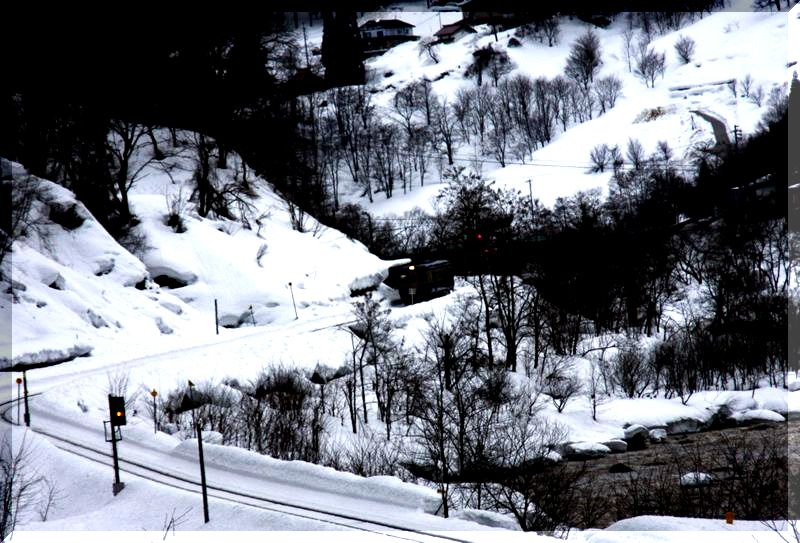 雪の白馬村    _c0073016_2012957.jpg