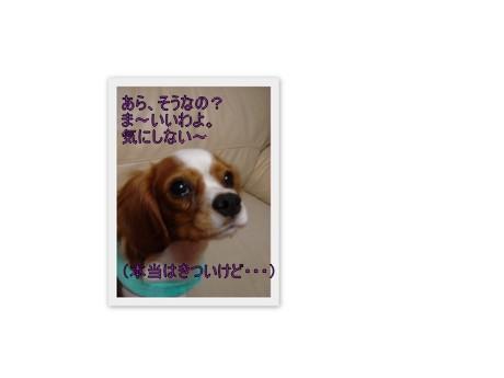 f0214121_224831.jpg