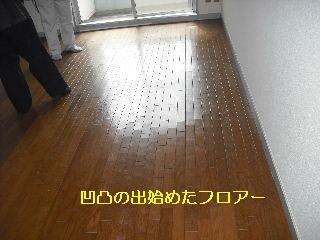 f0031037_17302029.jpg