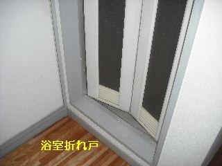 f0031037_17304344.jpg