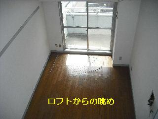f0031037_1731145.jpg