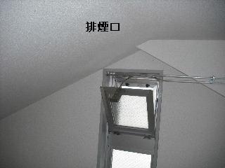 f0031037_1731379.jpg