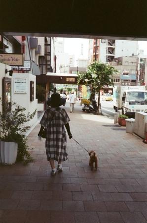 f0170055_16162011.jpg