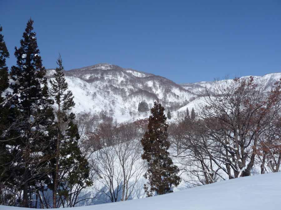 鍋倉山_c0223095_2017504.jpg