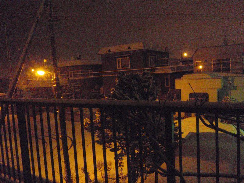 Winter again_c0025115_22293967.jpg