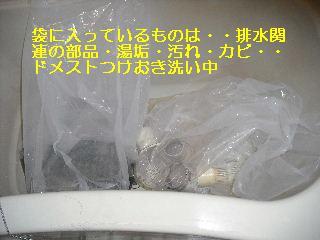 f0031037_18445165.jpg
