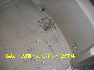 f0031037_1844597.jpg