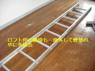 f0031037_1845432.jpg
