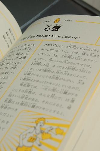 a0138449_19382191.jpg