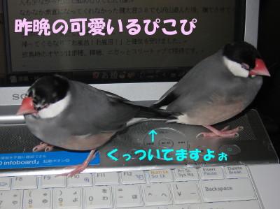 b0158061_21444277.jpg