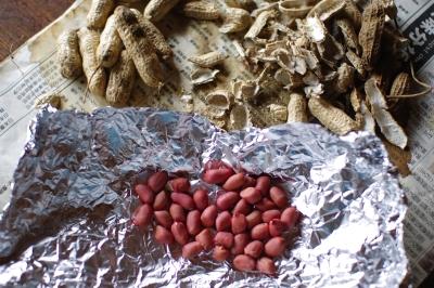 畑の落花生で、キャラメルナッツクッキーを作る_c0110869_2313319.jpg