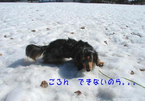f0195891_1852887.jpg