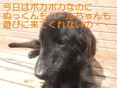 f0179203_15174565.jpg