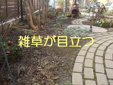 f0179203_7443930.jpg
