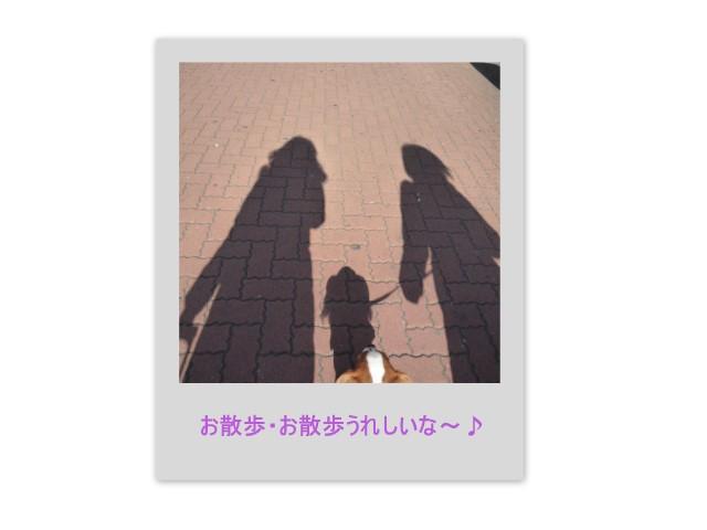 f0214121_947253.jpg