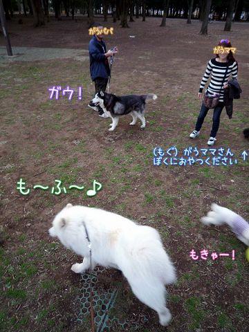 ひさしぶりおっきな公園_c0062832_14413899.jpg