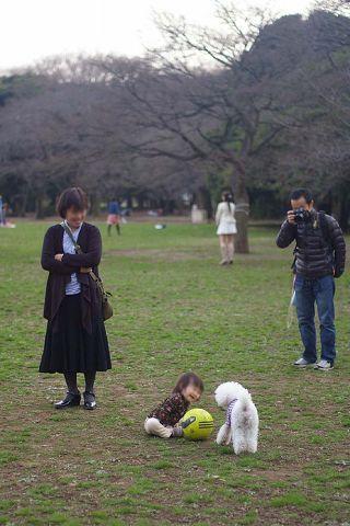 ひさしぶりおっきな公園_c0062832_158316.jpg