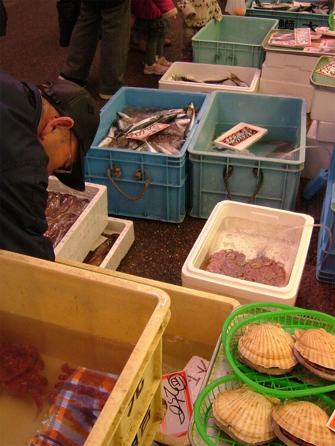 近江町朝獲れ鮮魚!!_c0110051_12451.jpg