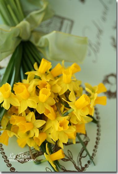 お庭に咲いたスイセン_f0127281_23442187.jpg