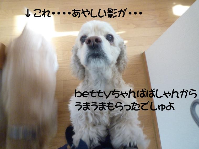 f0218182_10562460.jpg