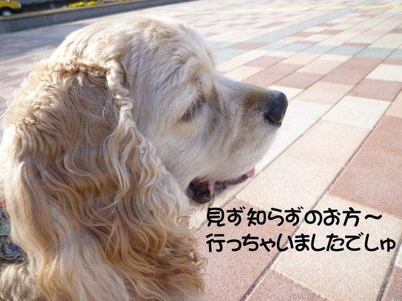 f0218182_11302697.jpg
