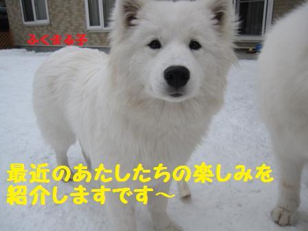 f0212597_10133964.jpg
