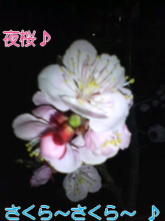 f0138311_14193222.jpg