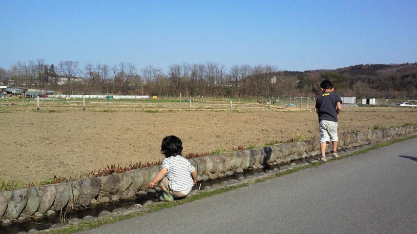 ぼく_e0160269_91406.jpg