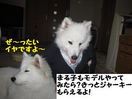 f0212597_2204535.jpg