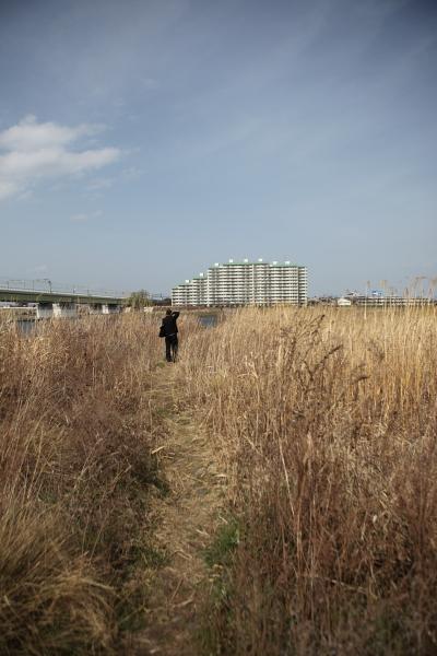 多摩川散歩@にこたま_c0162926_1265820.jpg