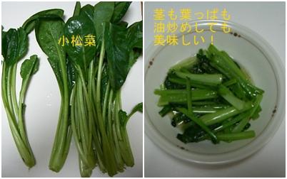 青菜炒めのアラカルト_a0084343_206326.jpg