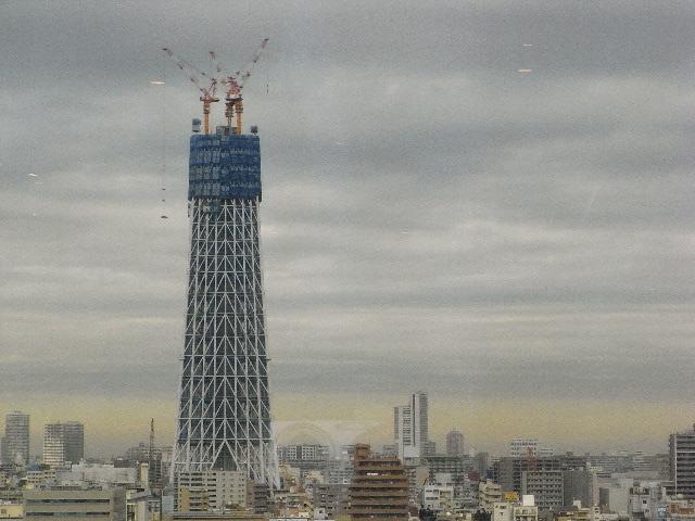 3月16日(火) スカイツリー再び_d0082944_2043895.jpg