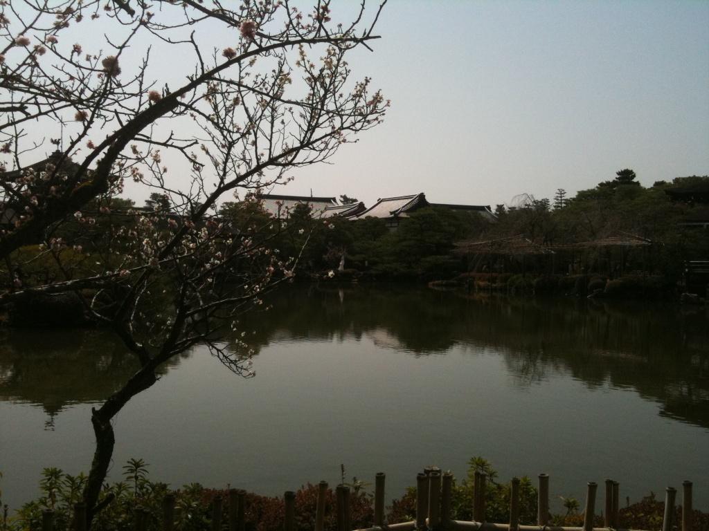 平安神宮no.3_f0184247_17253734.jpg
