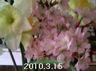 e0149157_410379.jpg